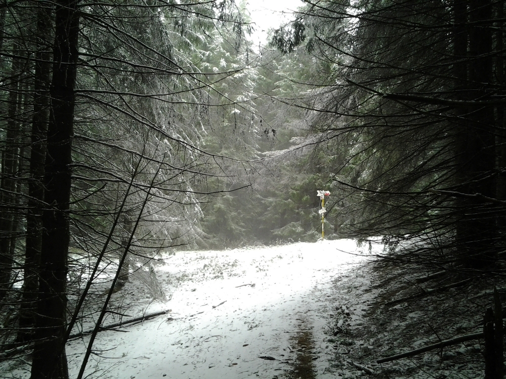 Bucegi Mountains first snow, Pure Romania, freedom, Beauty of Romania nature (11)