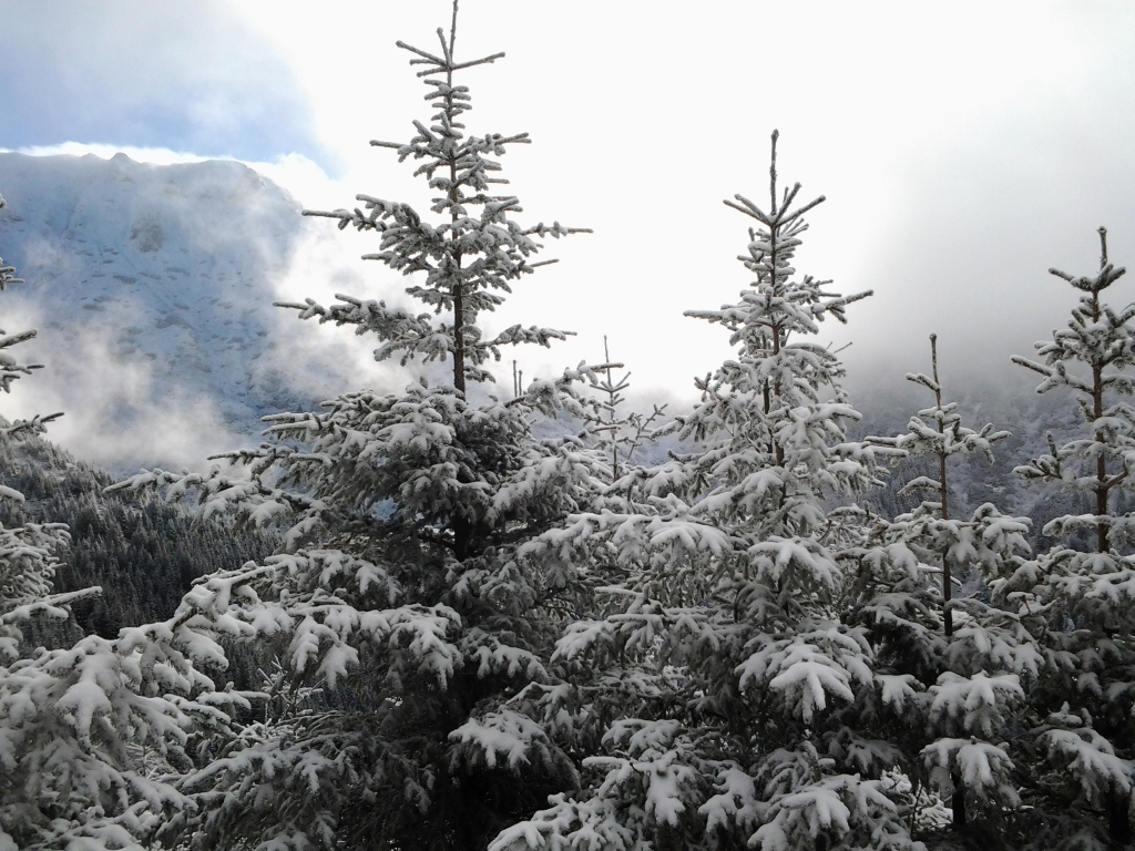 Bucegi Mountains first snow, Pure Romania, freedom, Beauty of Romania nature (14)