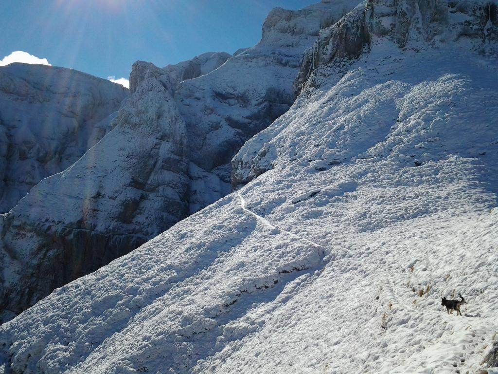 Bucegi Mountains first snow, Pure Romania, freedom, Beauty of Romania nature (36)