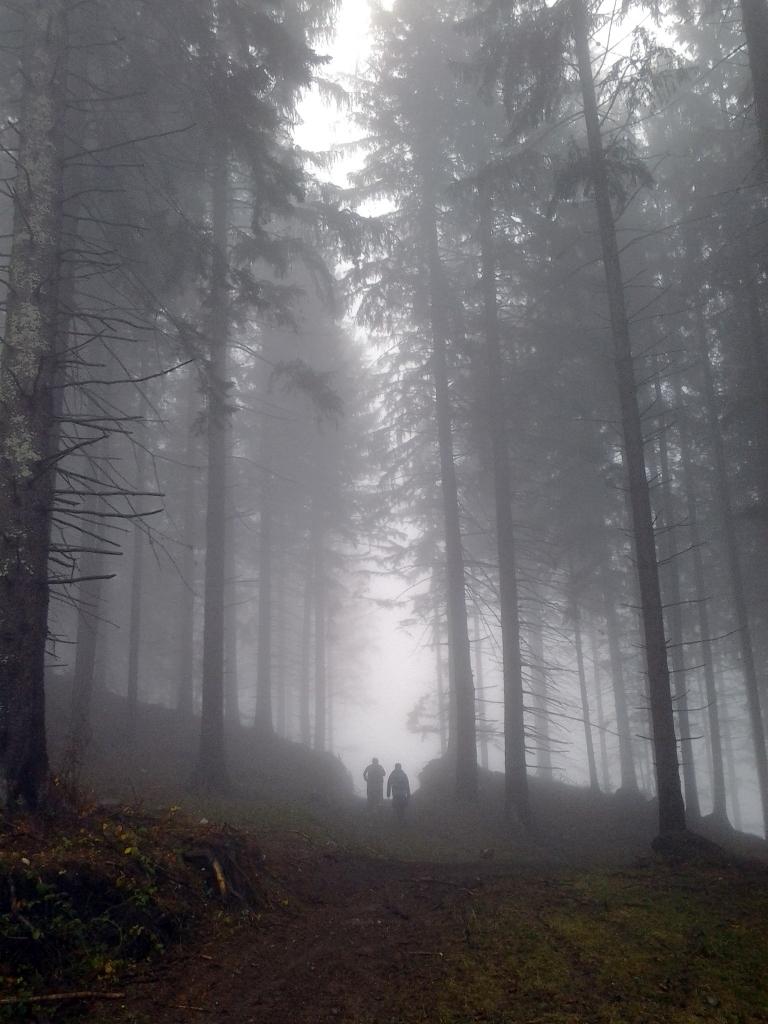 Bucegi Mountains first snow, Pure Romania, freedom, Beauty of Romania nature (4)